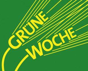 Logo IGW